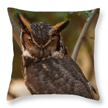 Great Horned Owl In A Tree 2 Throw Pillow by Chris Flees