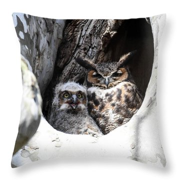 Great Horned Owl Nest Throw Pillow by Gary Wightman