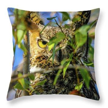 Great Horned Owl Peeking At It's Prey Throw Pillow