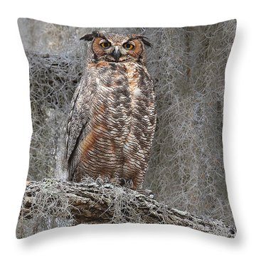 Great Horned Owl Perched Throw Pillow by Alan Lenk