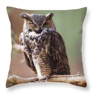 Great Horned Owl Perched On Branch Throw Pillow