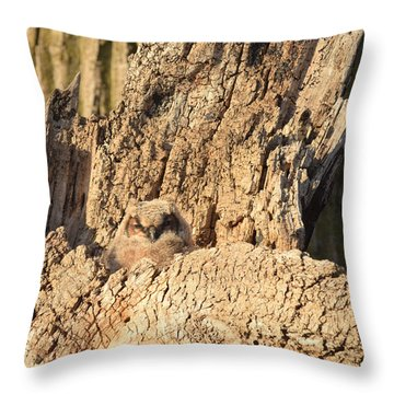 Great Horned Owlet Two Throw Pillow