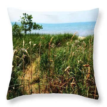 Throw Pillow featuring the photograph Great Lake Beach Path by Michelle Calkins