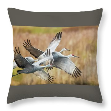 Great Migration  Throw Pillow