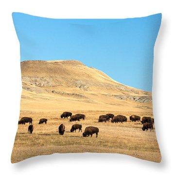 Great Plains Buffalo Throw Pillow by Todd Klassy