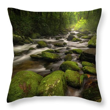 Great Smoky Mountains Roaring Fork Throw Pillow