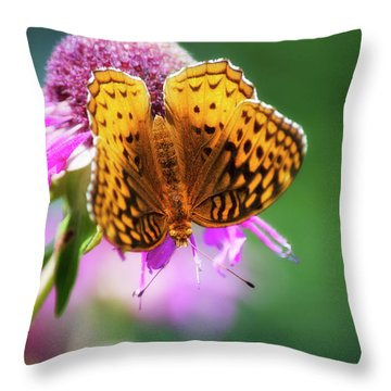Great Spangled Fritillary Butterfly Throw Pillow by Christina Rollo