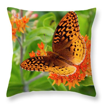Great Spangled Fritillary I Throw Pillow