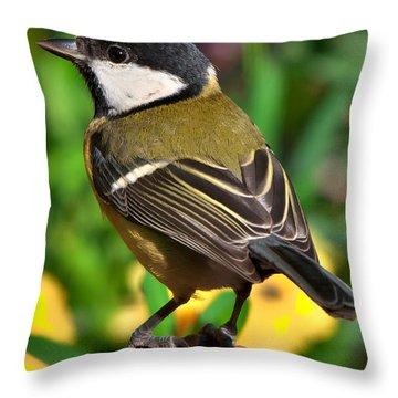 Great Tit British Bird Parus Major Throw Pillow