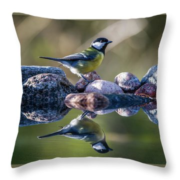Great Tit On The Stone Throw Pillow