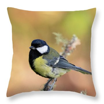 Throw Pillow featuring the photograph Great Tit - Parus Major by Karen Van Der Zijden