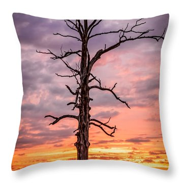 Great Tree At Sunset Throw Pillow