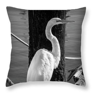 Great White Heron In Black And White Throw Pillow by Garry Gay