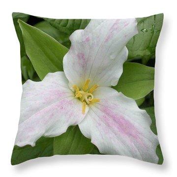 Great White Trillium Throw Pillow