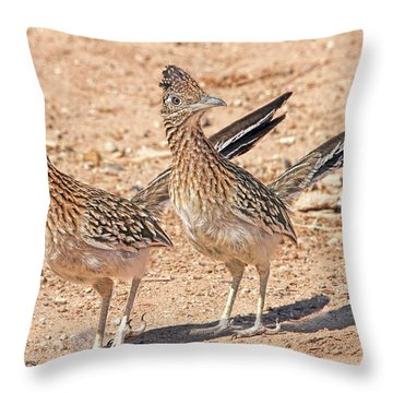Greater Roadrunner Bird Throw Pillow