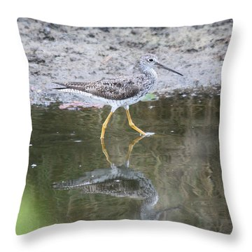 Greater Yellowleg Throw Pillow