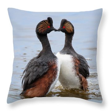 Grebe Courtship Dance Throw Pillow