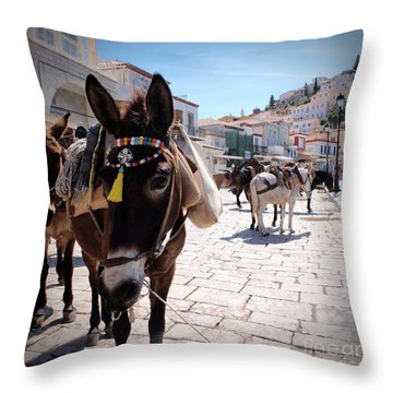 Greek Donkey Throw Pillow by Louise Fahy