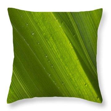 Green Abstract 2 Throw Pillow