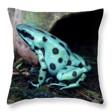Green And Black Poison Dart Frog Throw Pillow