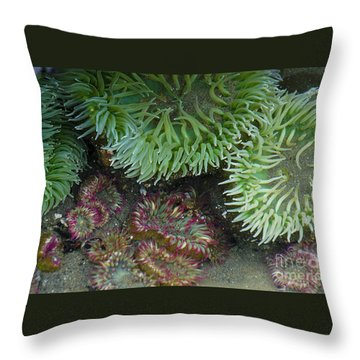 Green And Strawberry Anemonies Throw Pillow