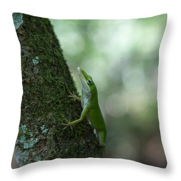 Green Anole Throw Pillow by Christopher L Thomley