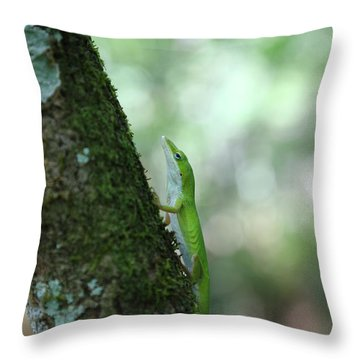 Green Anole Climbing Throw Pillow by Christopher L Thomley