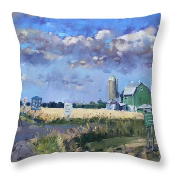 Green Barn In Glen Williams On Throw Pillow by Ylli Haruni