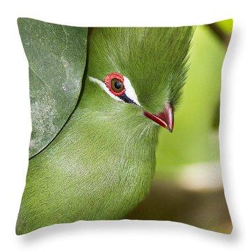 Green Turaco Bird Portrait Throw Pillow