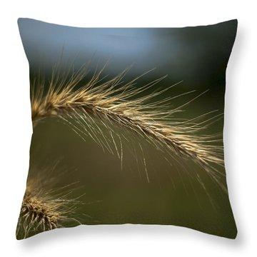 Green Blue Gold Throw Pillow