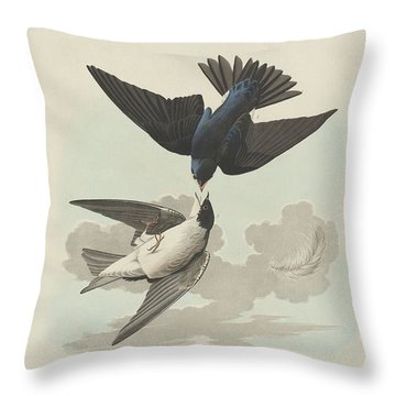 Green-blue Or White-bellied Swallow Throw Pillow by Rob Dreyer