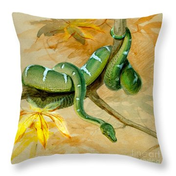 Green Boa Throw Pillow