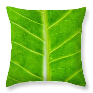 Green Botany -  Part 2 Of 3 Throw Pillow