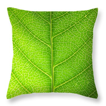 Green Botany -  Part 3 Of 3 Throw Pillow