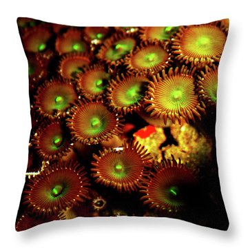 Throw Pillow featuring the photograph Green Button Polyps by Anthony Jones