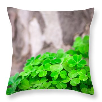 Throw Pillow featuring the photograph Green Clover And Grey Tree by John Williams