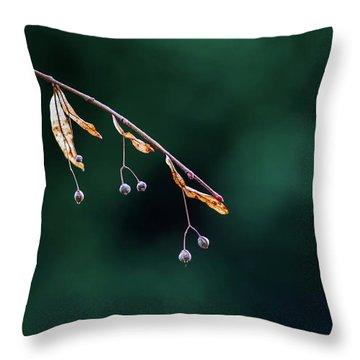 Green Contrast Throw Pillow by Vincent Pelletier