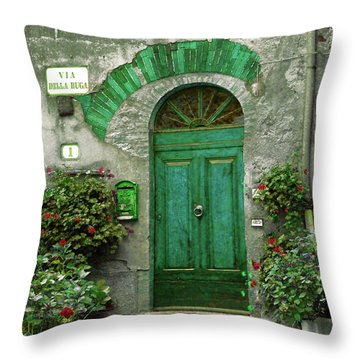 Green Door Throw Pillow by Karen Lewis