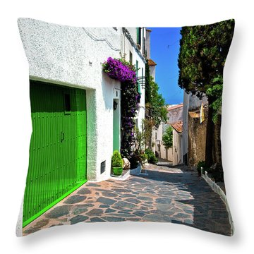 Throw Pillow featuring the photograph Green Door Passage  by Harry Spitz