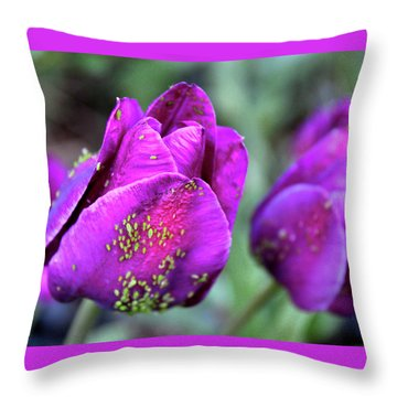 Aphids On Purple Tulips Throw Pillow