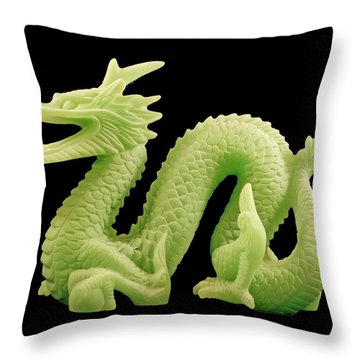 Throw Pillow featuring the photograph Green Dragon On Black by Bill Barber