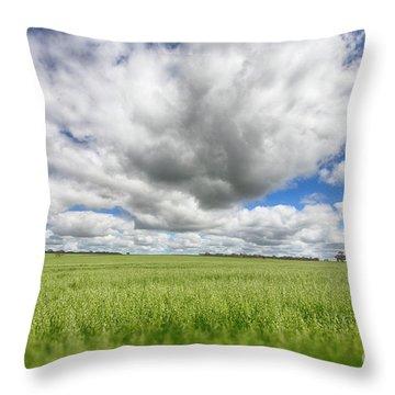 Throw Pillow featuring the photograph Green Fields 2 by Douglas Barnard