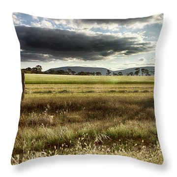 Throw Pillow featuring the photograph Green Fields 6 by Douglas Barnard