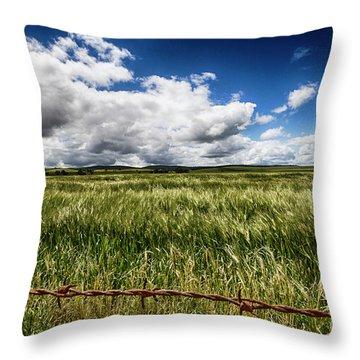 Throw Pillow featuring the photograph Green Fields by Douglas Barnard
