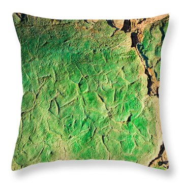 Green Flaking Brickwork Throw Pillow