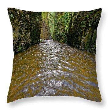 Throw Pillow featuring the photograph Green Flow by Jonathan Davison