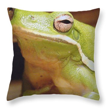 Green Frog Throw Pillow by J R Seymour