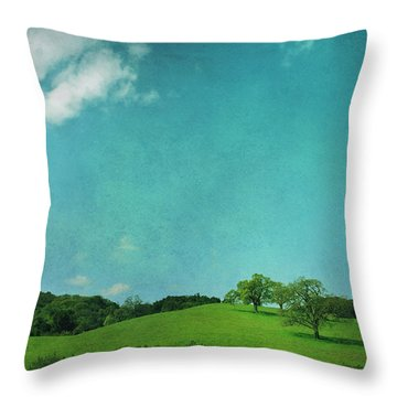 Green Grass Blue Sky Throw Pillow by Laurie Search