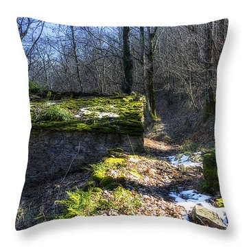 Throw Pillow featuring the photograph Green Grass Roof In The Trapena Wood by Enrico Pelos