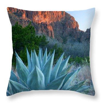 Big Bend Throw Pillows
